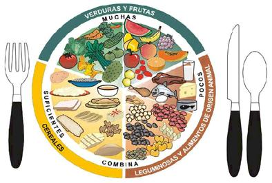 20141123183018-ls-nutricion.jpg